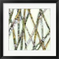 Framed Lemongrass I