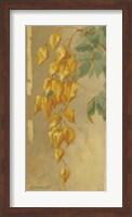 Framed Golden Chains II
