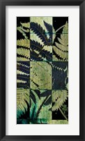 Framed Midnight Ferns I