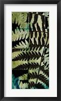 Framed Midnight Ferns II