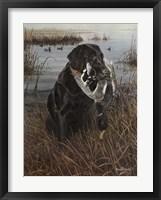 Framed Friend in the Marsh