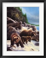 Framed Grizzlies by Falls