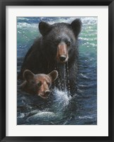 Framed Bearly Swimming