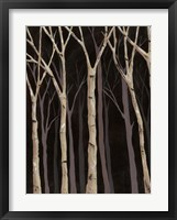 Framed Midnight Birches I