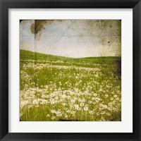 Framed Field I