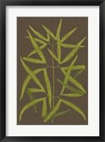 Framed Ferns on Linen I