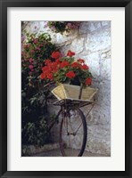 Framed Flower Box Bike