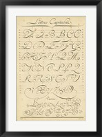 Framed Alphabet Sampler IV