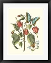 Framed Midsummer Floral I