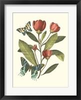 Framed Midsummer Floral II