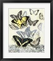 Butterfly Habitat I Framed Print