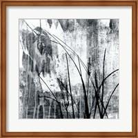 Framed Exposure I