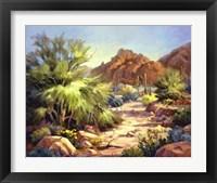 Framed Desert Beauty