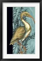 Framed Heron in the Grass I