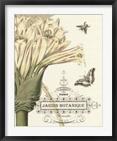 Jardin Botanique II Framed Print