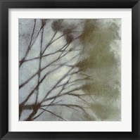 Framed Diffuse Branches II