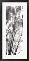 Framed Exposure IV