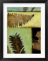 Framed Fossilized Ferns IV