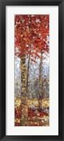 Framed Crimson Woods I