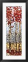 Framed Crimson Woods II