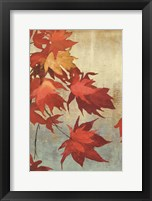 Framed Maple Leaves I