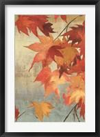 Framed Maple Leaves II