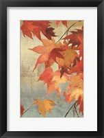 Framed Maple Leaves II