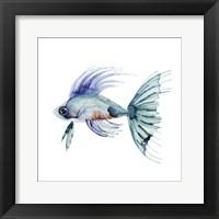 Framed Teal Fish