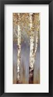 Framed Butterscotch Birch Trees II - MINI