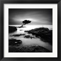 Framed Tree of Temptation