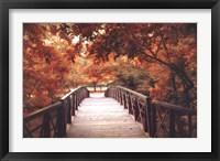 Framed Footbridge