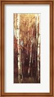Framed Birch Forest II - Mini
