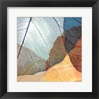 Framed Blue and Orange Leaves II
