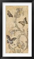 Framed Papillion Decoratif I