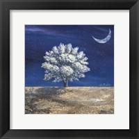 Framed Albero dei sogni