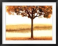 Framed Golden Morning I