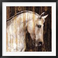 Framed Horse II