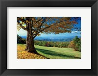 Framed Blue Ridge Beauty