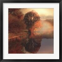 Framed Summer Reflections