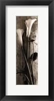Framed Driftwood Lilies