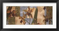 Framed Orchid Screens I