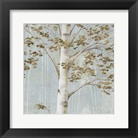 Framed Birch Study II