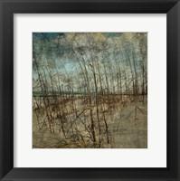 Framed Masonboro Island No. 6