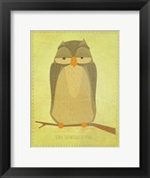 The Sensible Owl Framed Print