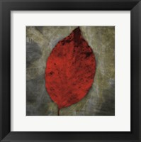 Framed Red Dogwood