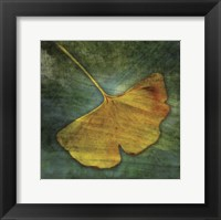 Framed Gingko 3