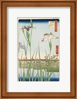 Framed Irises at Horikiri, 1857