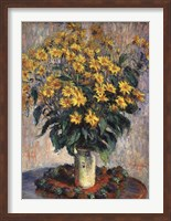 Framed Jerusalem Artichoke Flowers, 1880