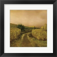 Framed Sunset Cornfield