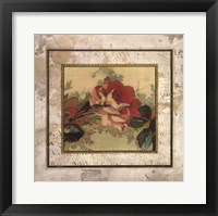 Framed CABBAGE ROSES II